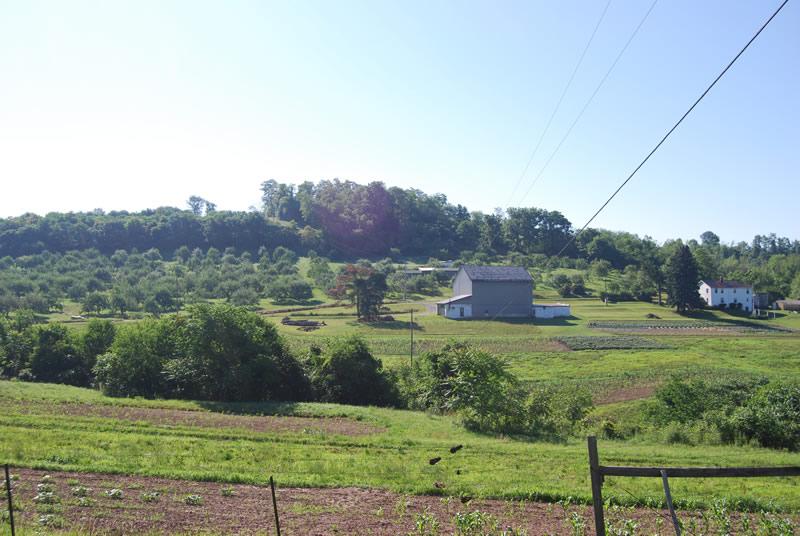 Upper Burrell Township